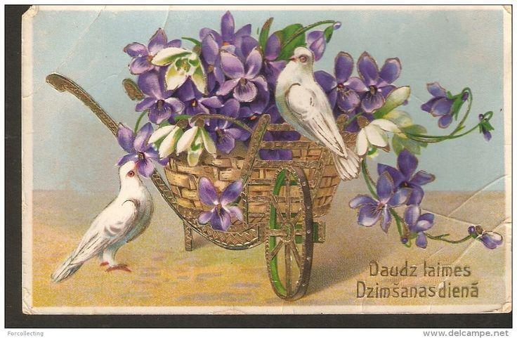 b21. Old Birthday Greetings embossed postcard - birds white Dove Pigeon flowers Pansies Violet viola snowdrop pansy