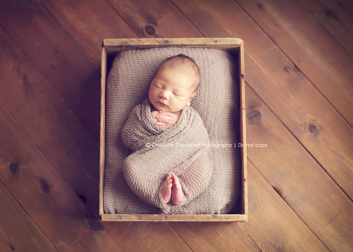 Newborn photography vancouver new born props feathers basket neutral tones sleeping