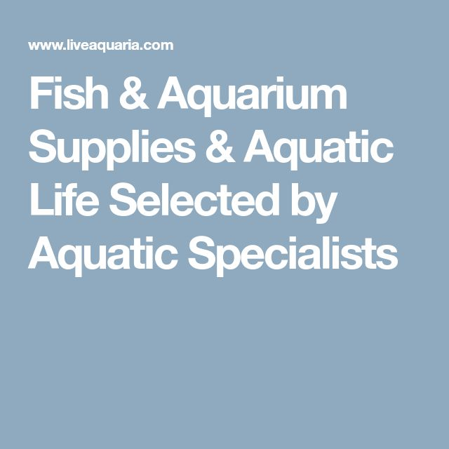 Fish & Aquarium Supplies & Aquatic Life Selected by Aquatic Specialists
