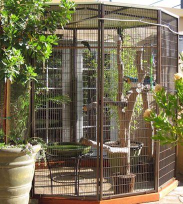 Suncatcher aviary