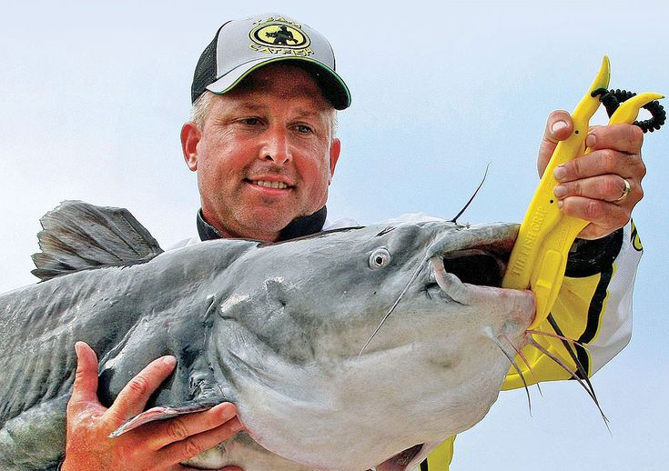 Catfish expert Keith Sutton sets the hook on the top catfishing gear for fighting or weighing big whiskerfish!