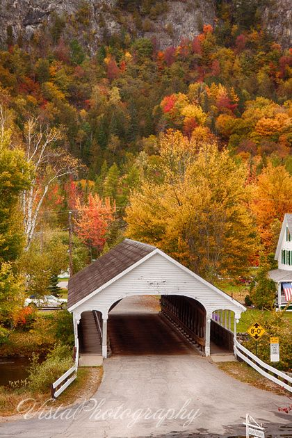 Kissing Bridge Vermont Stark covered br...