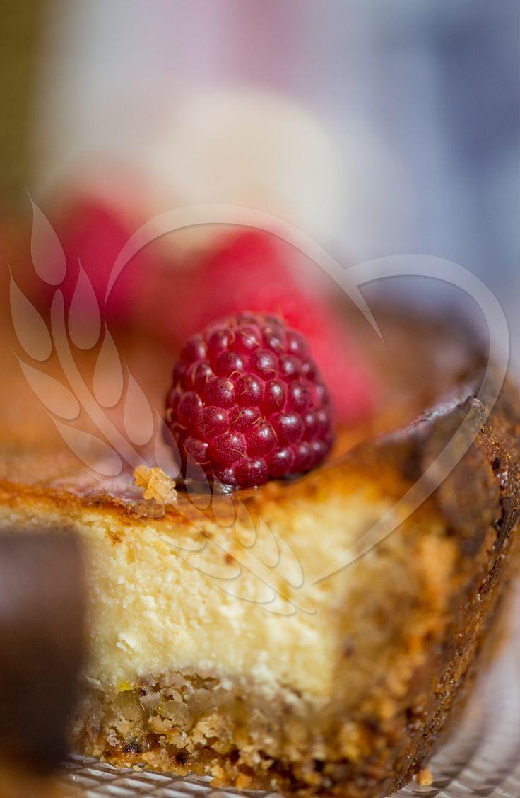#cheesecake #BunBun #senneville #goodtaste #magic #natural