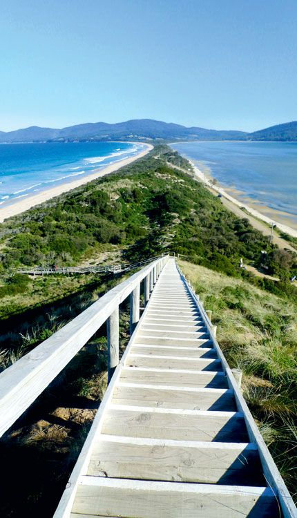 The magnificent view from Truganini Lookout at The Neck, which separates North and South Bruny Island, #Tasmania #Australia