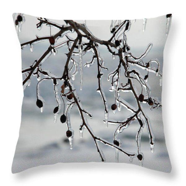 Throw Pillow featuring the photograph Ice Art by Randi Grace Nilsberg