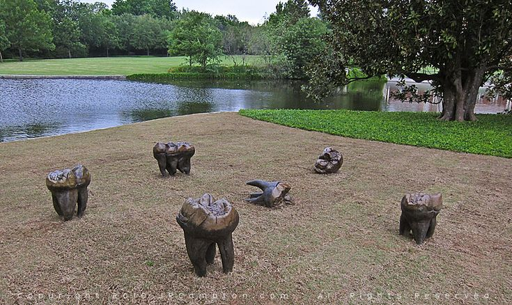 Kiki Smith   Cave Bear Teeth   2000   cast bronze with patina. I HAVE SAT ON THESE!!! love Kiki Smith! Teeth are oddly comfortable....