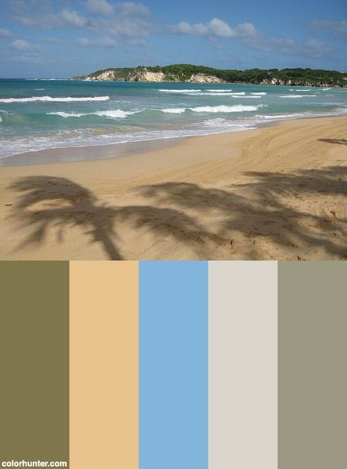 Shadow Palmed Macao Beach Color Scheme