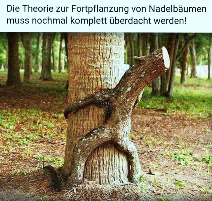 Natur partnersuche