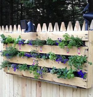 Sehe dir das Foto von Leonie mit dem Titel Wunderschöner paletten Blumenkasten … – Garten