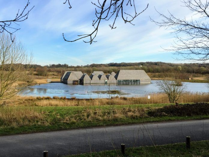 Wildlife wanders at Brockholes Nature Reserve | The Urban Wanderer | Manchester based Outdoor and Travel Blog