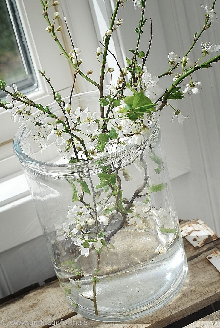 Spring in the garden room