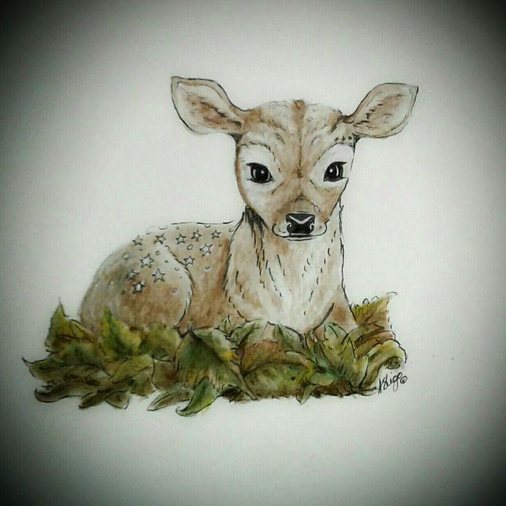 Acrylic and pen fawn