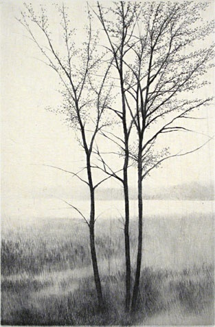 Shigeki Tomura. End of Winter II 2006. Drypoint, chine colle 25/47. 5 3/4 x 3 3/4