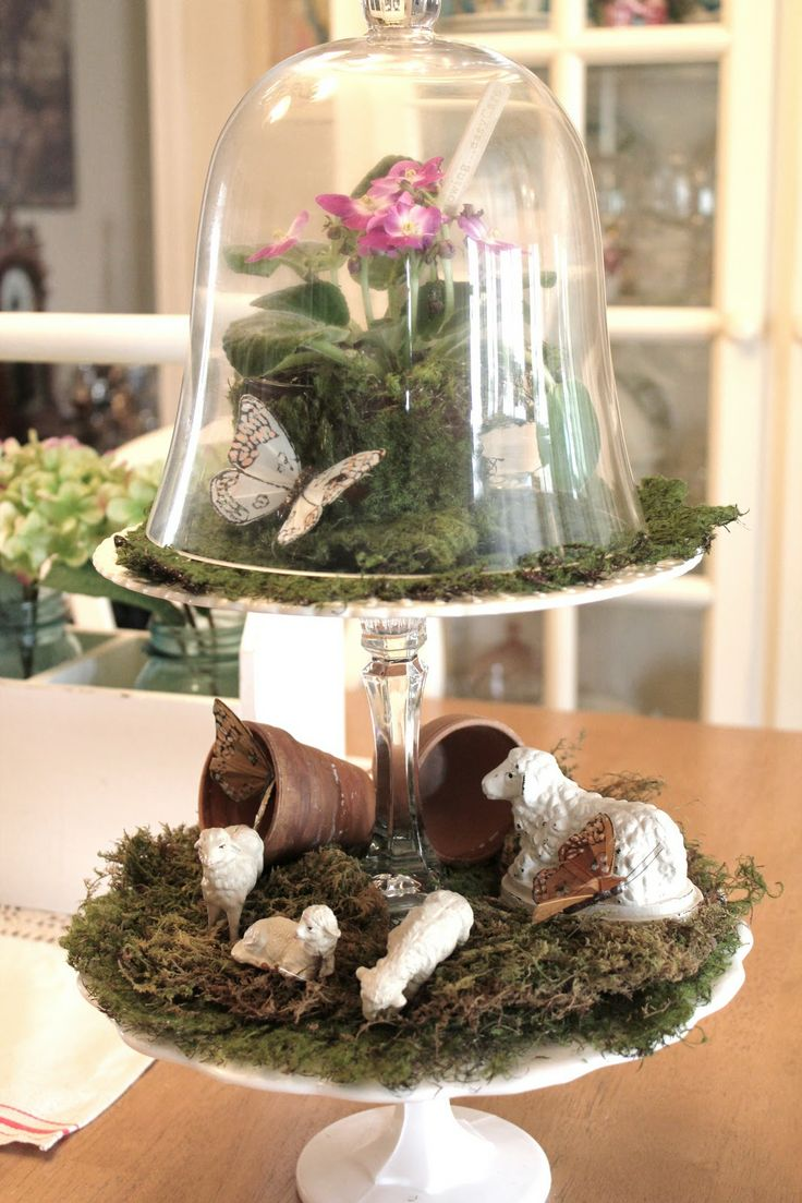 best terrariums images on pinterest succulents gardening and