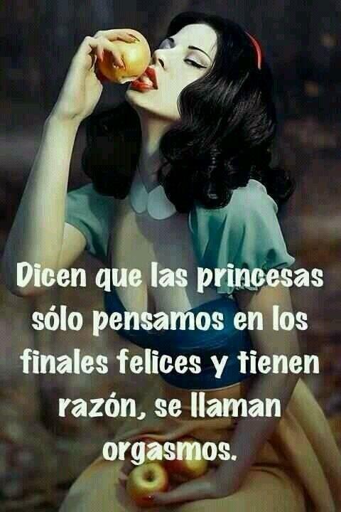 Dicen que las princesas solo pensamos en los finales felices y tienen razon….