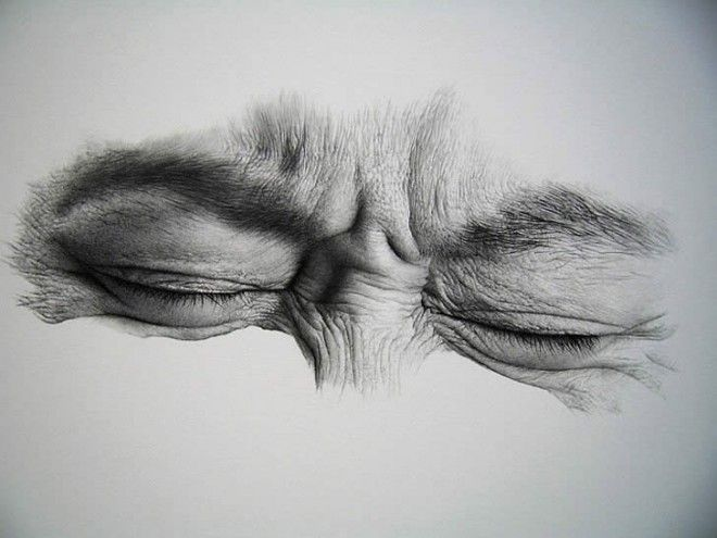 601 best Arts: Pencil Drawing images on Pinterest