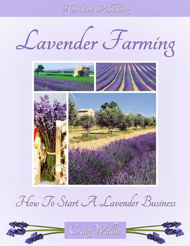 Lavender Farming: How to Start a Lavender Business by Craig Wallin $17.00 on Profitable Plants Digest at http://www.profitableplantsdigest.com/lavender/