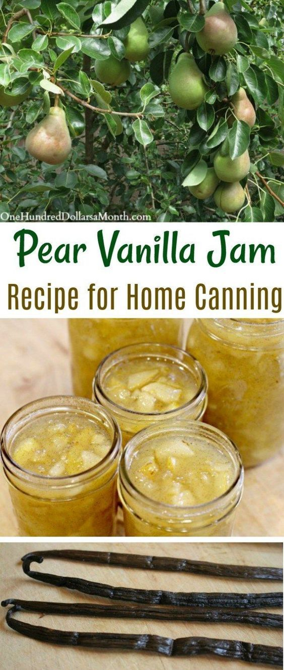 Canning 101 - Pear Vanilla Jam Recipe - One Hundred Dollars a Month