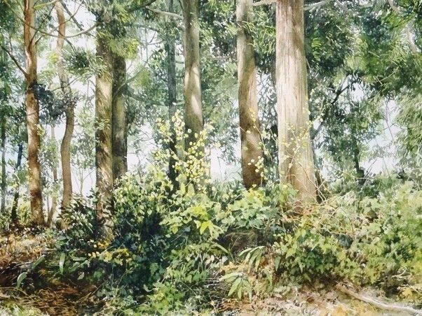 Light on trunks (Abe Toshiyuki)