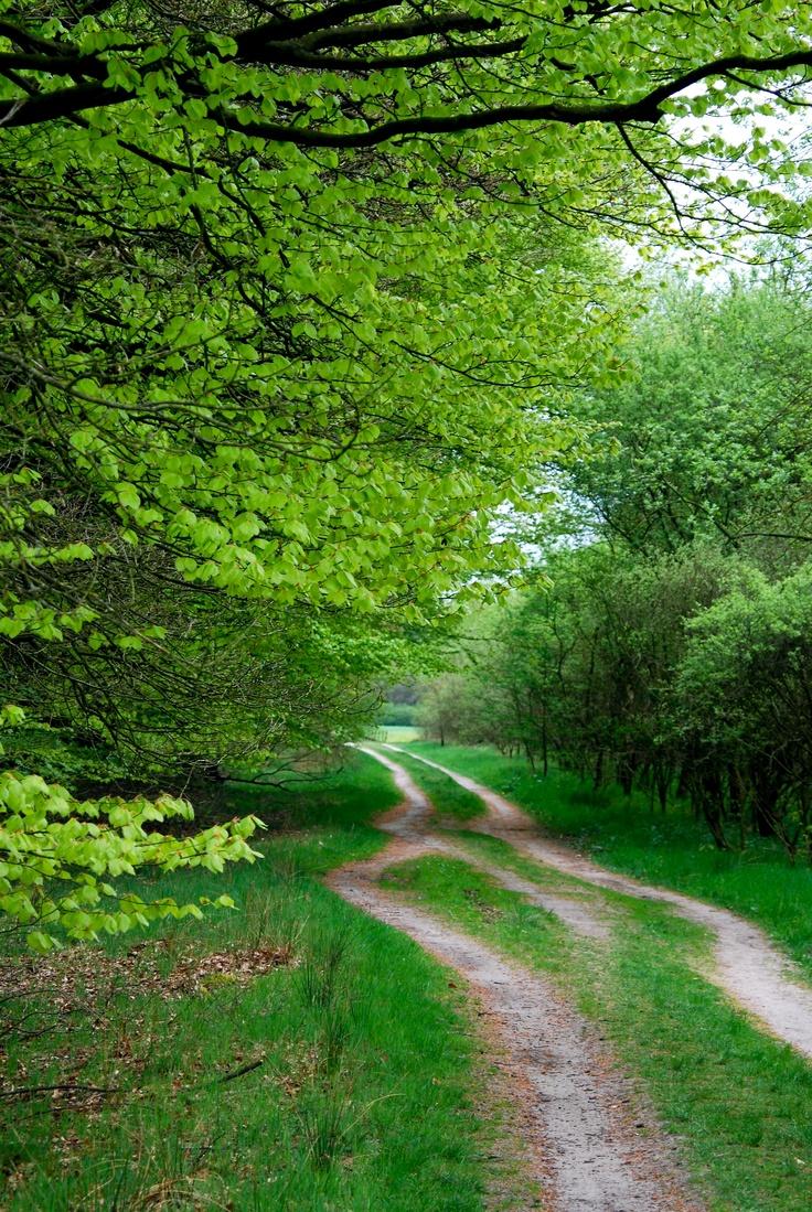 Drentsche Aa National Park and Landscape