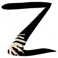 Best Z For Zoe Images On   Letters Typography And