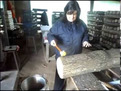 Cultivo de Cogumelos, Mushrooms, Shiitake, Champignom. Dr.ª Ana Maria Mo...