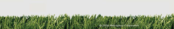 Artificial Grass for Dogs and Dog Runs - Synthetic Grass for Pets and Commercial Facilities