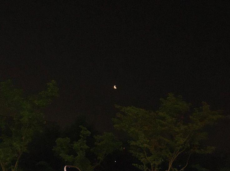 dark mocha orbs glowered - 735×548