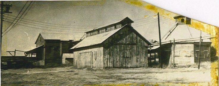 Cotton Gin, Mesquite, Texas. Circa 1950