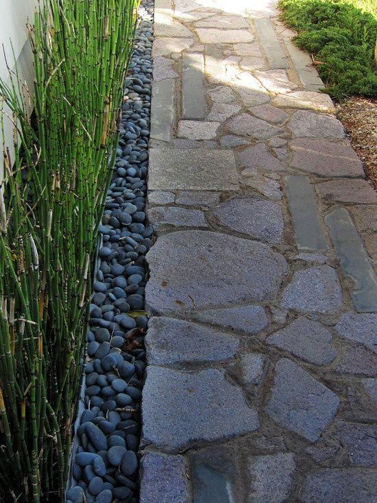 bamboo!  Side yard idea