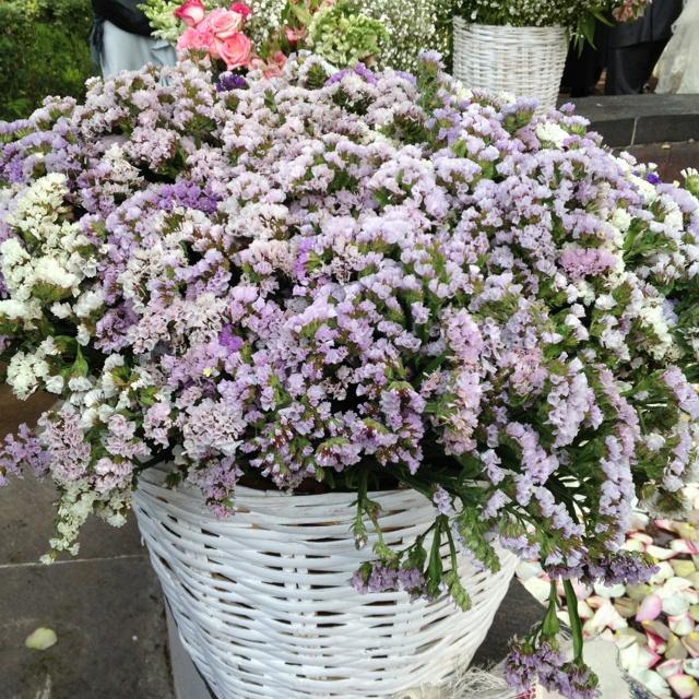Beautiful cottage flowers