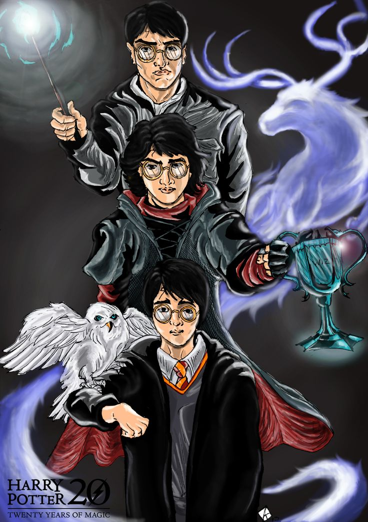 Harry Potter 20th Anniversary Fan Poster
