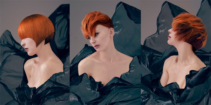 Contribution: Hairdresser of the year 2013 - By me  #hair #sassoon #pontusjudas #contribution