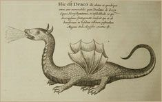 dragons 2 deutsch