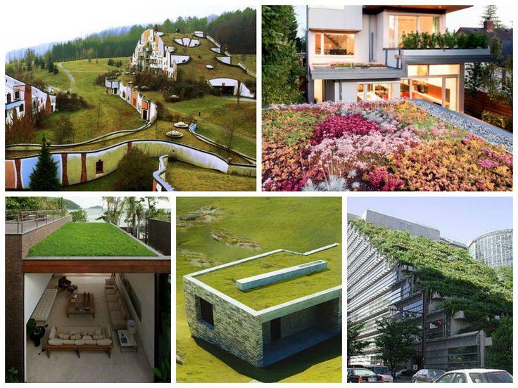 Telhado verde também chamado de teto jardim, está na moda e é sustentável. Mas você sabe quais são as vantagens e desvantagens de um telhado verde?