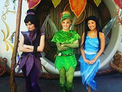 Disney Fairies at Pixie Hollow Vidia Tinker Bell Silvermist.jpg