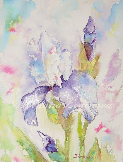 Ирис, весенняя акварель - бледно-сиреневый,сиреневый,розовый,ирисы,цветы