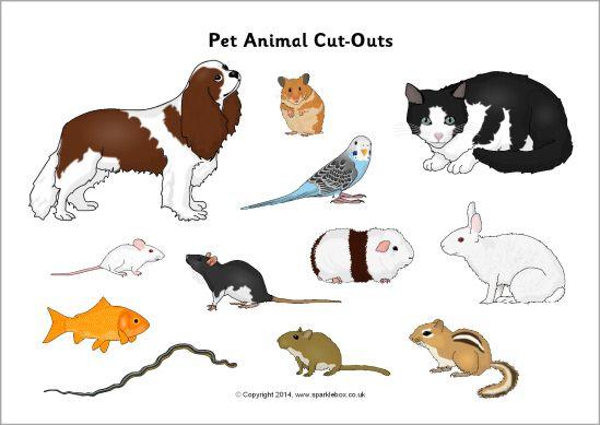 Pet animal cut-outs- SparkleBox-Sort into different habitats