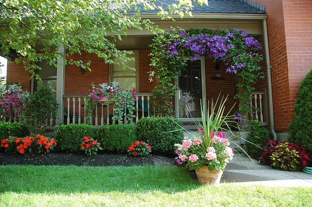 Buffalo Garden Walk: 14 Best Images About Garden Walk Buffalo Porches On