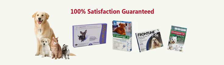 frontline plus for dogs #frontlineplusfordogs Sentinel is the only oral preventive that guards against heartworm, adult hookworm, adult roundworm, whipworms and prevents development of flea eggs. It is a prescribed medicine.  http://www.choicepetmeds.com/