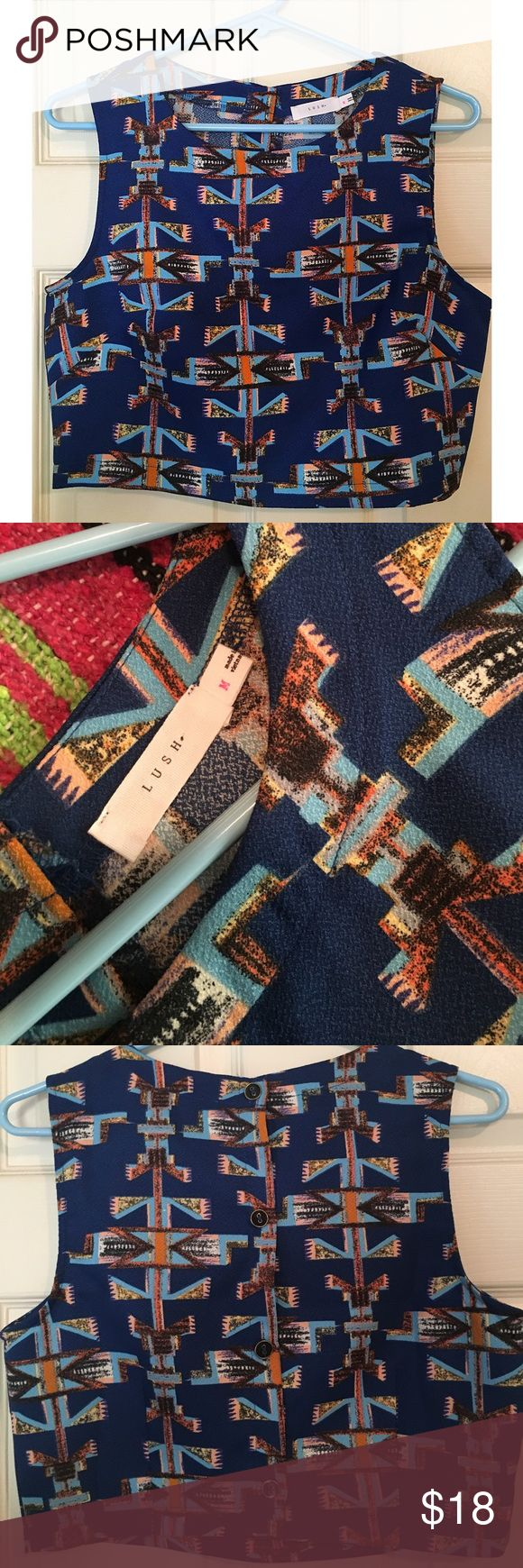 Aztec Crop Top NWOT Aztec print crop top- never worn! Purchased from Nordstrom- button back Lush Tops Crop Tops