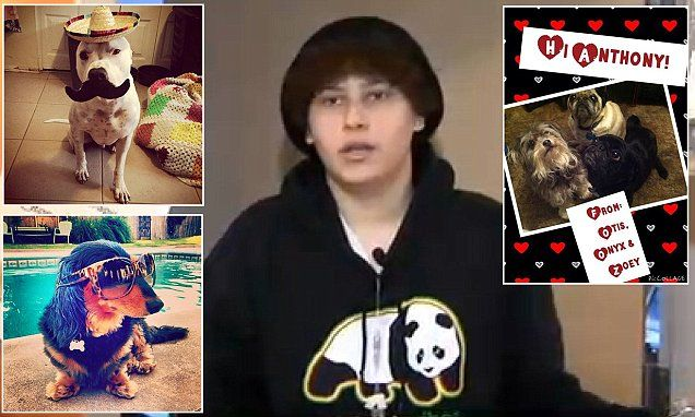 Puppy love is the best medicine: Hundreds of thousands of dog owners post funny pictures of their pets to Facebook in campaign to cheer up Arizona teenager with leukemia  http://www.dailymail.co.uk/news/article-2896860/Thousands-dog-photos-posted-Facebook-digital-event-Arizona-teenager-leukemia.html#ixzz3NySHVAG0