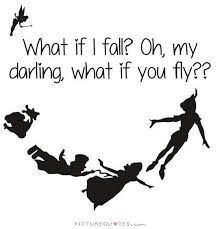 Image result for what if you fly quote