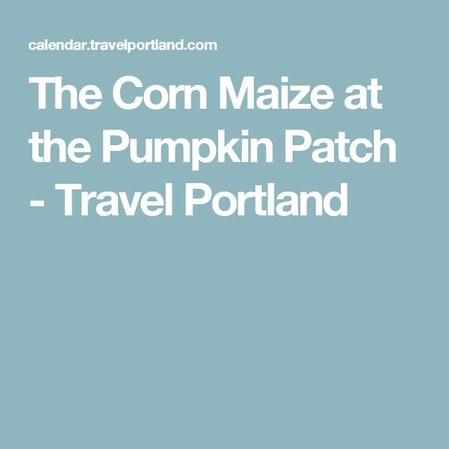 The Corn Maize at the Pumpkin Patch - Travel Portland