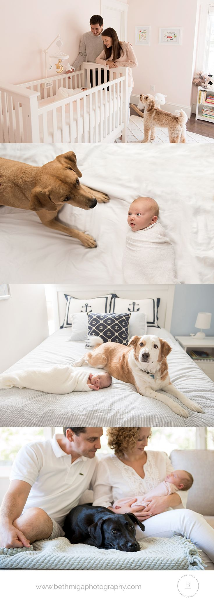ideas for photos of newborn baby with dog | boston newborn photographer | puppy love | baby and puppy photo ideas