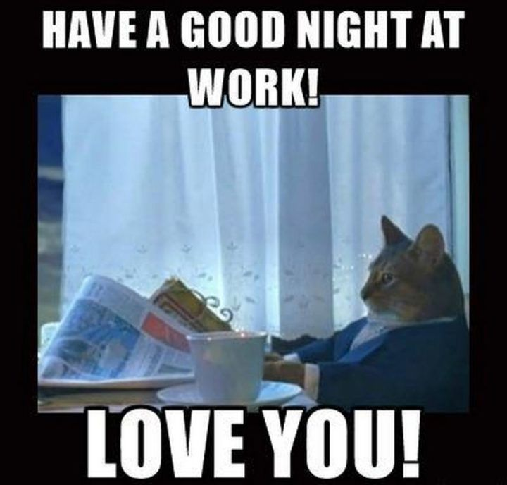 101 Good Night Memes Have A Good Night At Work Love You Good Night Funny Good Night Friends Good Night Sweetheart
