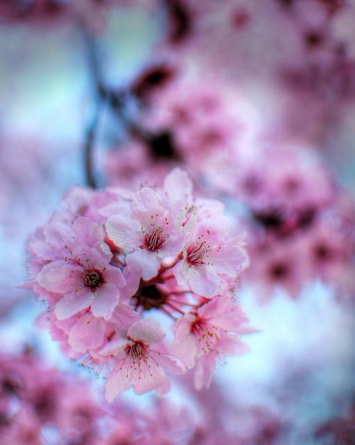 Meine Top 10 Selbst-Pflege Tipps für den Frühling