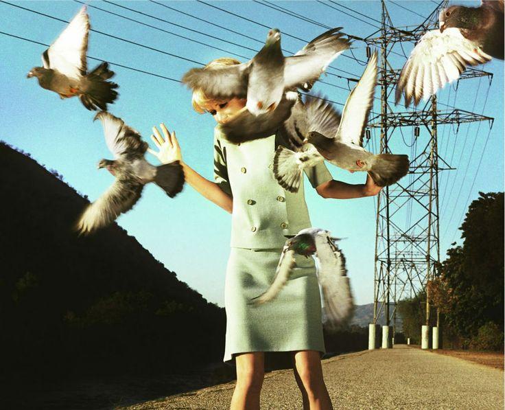 """Alex Prager """"Калифорния 70-80х годов – незабываемая атмосфера и стиль. По сей день дизайнеры, музыканты, художники и фотографы неустанно черпают вдохновение из образа жизни того времени. Фотограф Alex Prager ведет свои съемки в стиле ретро-фэшн. Яркие платья, макияж, машины и предметы быта – все в стиле американского ретро"""""""