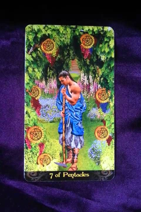 The coming week's reminder is brought to us by the Seven of Pentacles When we are functioning optimally, the energies it represents for us would be our relia...