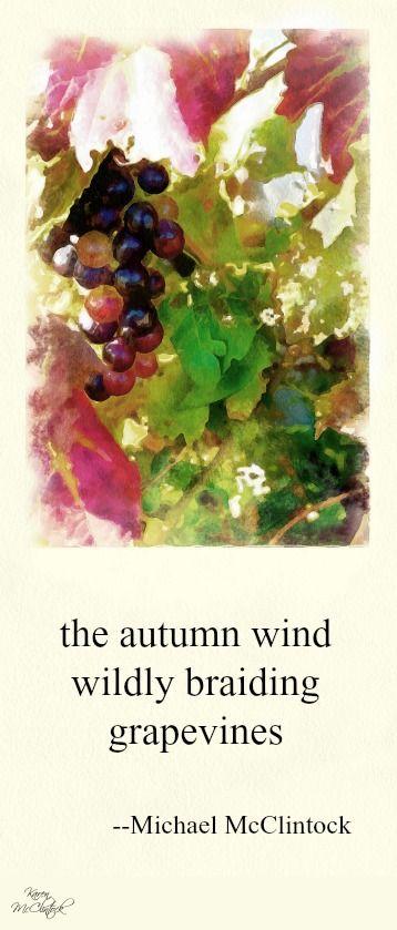 Haiku: the autumn wind -- by Michael McClintock.